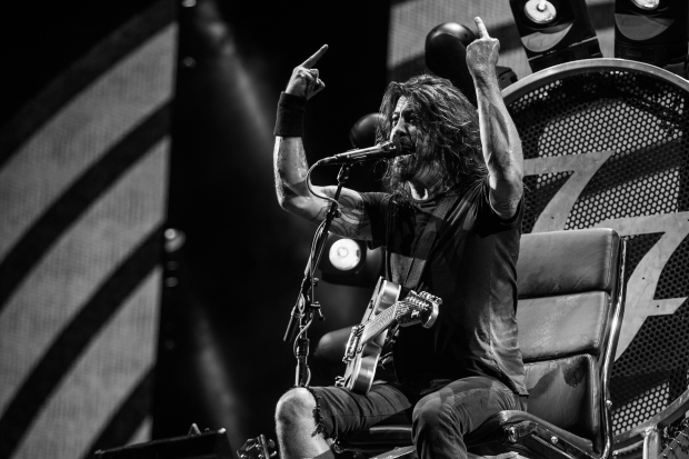 Foo Fighters by Cambria Harkey